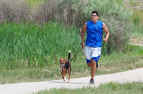 Guy Jogging with Dog